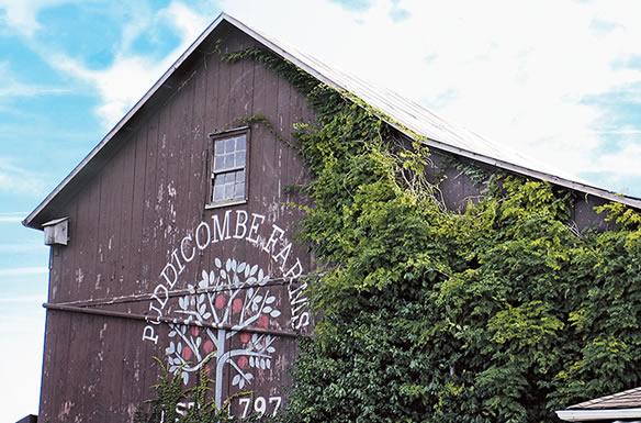 Puddicombe Farms
