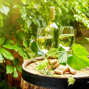 summer_niagara_wine_tour, niagara_wine_tour, wine_tour
